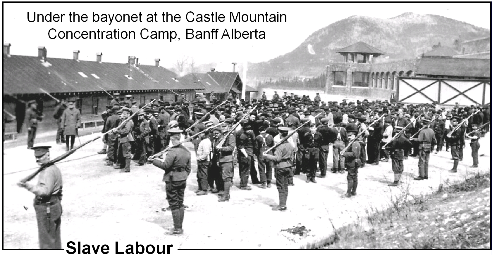Under the bayonet at the Castle Mountain Concentrtation Camp, Banff Alberta